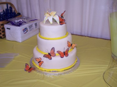 butterfly cake from Barbara